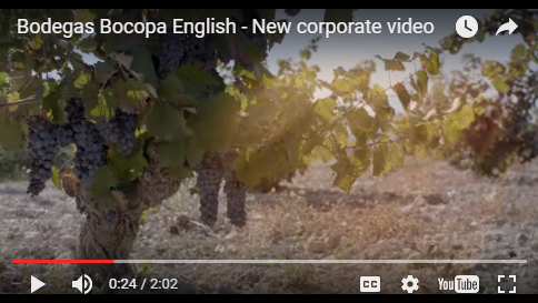 Bocopa Corporate Video